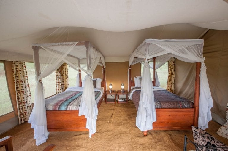 Acacia Central Camp twin tent