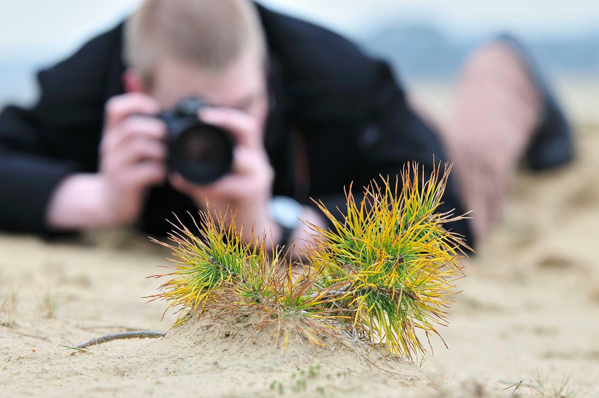 Op het Kootwijkerzand fotografeert een workshop deelnemer tijdens een workshop natuurfotografie een vliegden