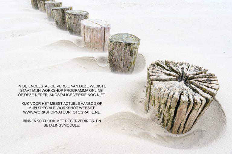 Mededeling workshops Nederlandstalige kant website