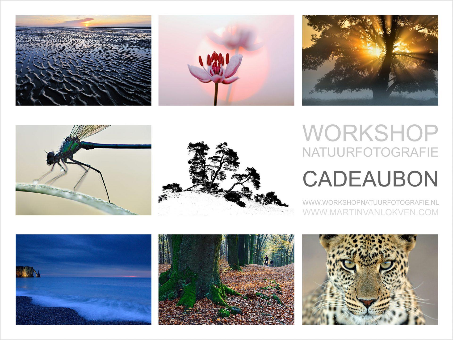 Workshop natuurfotografie voucher